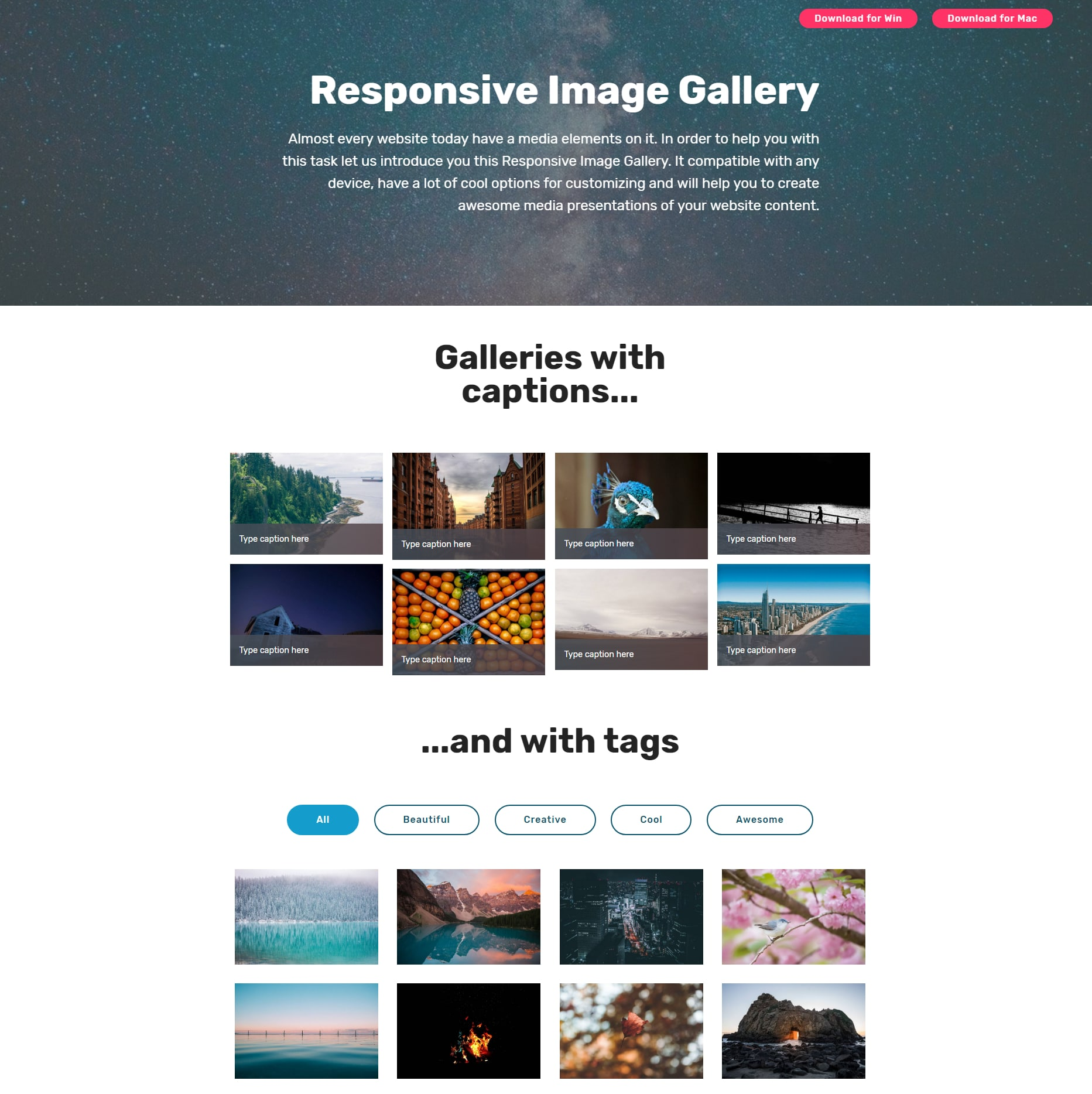 JavaScript Bootstrap Illustration Gallery